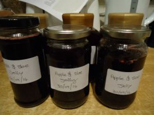 Sloe  jelly (1)-w500-h500