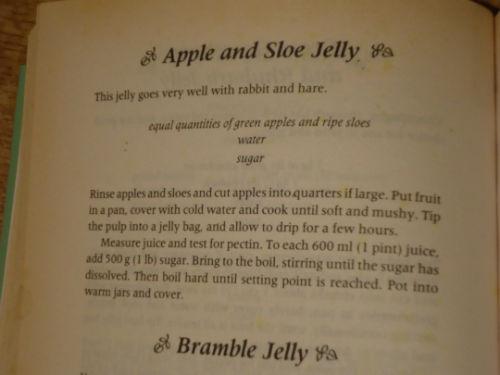 Sloe  jelly (4)-w500-h500