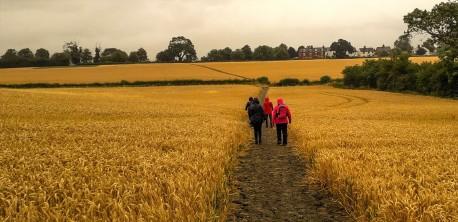 2018 Jul 29 - Walk to Gt Bowden