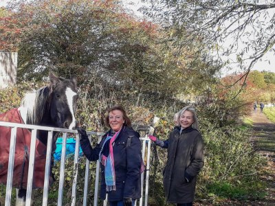 Walk 28 Oct 2018 Wistow2